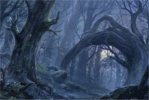 2014-AUG-Trees-The-Misty-Wood-by-ChaoyuanXu-300x202